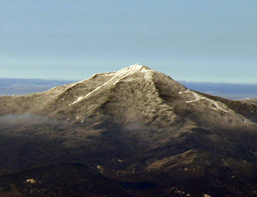 Whiteface from Algonquin