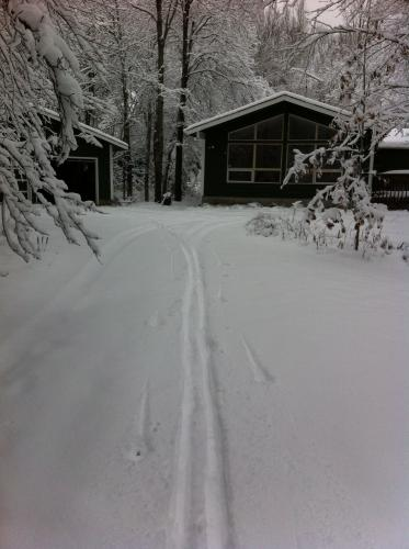 First trax in my driveway is all I got!